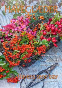 Læs Haveglæder efterår 2020 online