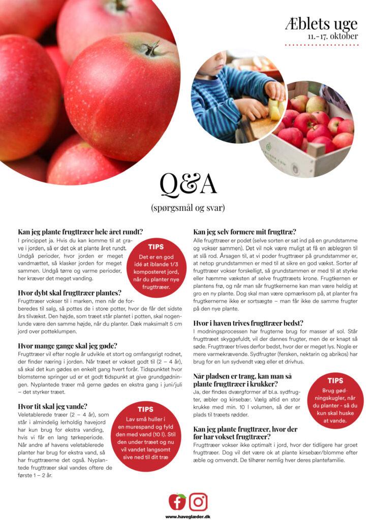 Spørgsmål og svar Æbler